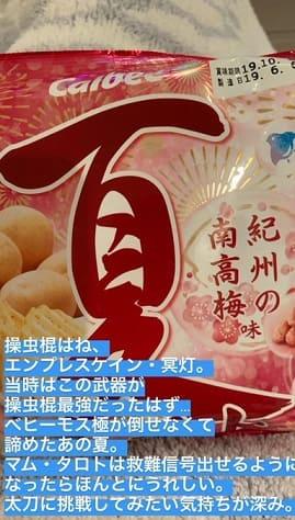 太った本田翼の好きなお菓子