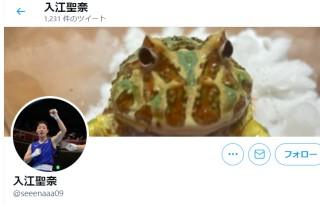 入江聖奈のカエル好き画像